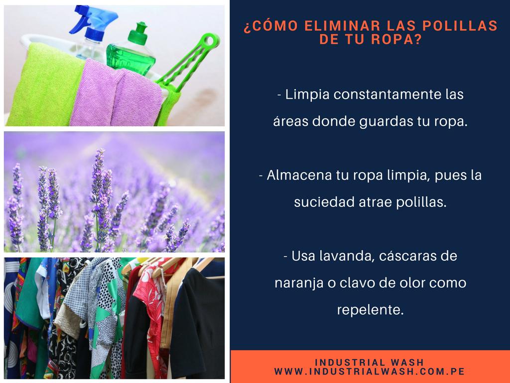 4 consejos para eliminar las polillas de tu ropa - Como eliminar la polilla ...